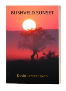 David James Dixon Bushveld Sunset